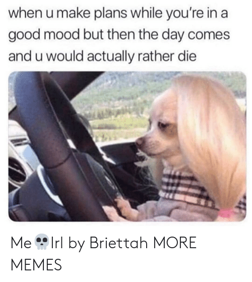 Dank, Memes, and Mood: when u make plans while you're in a  good mood but then the day comes  and u would actually rather die Me💀Irl by Briettah MORE MEMES