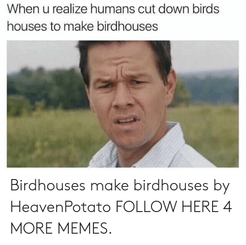 Dank, Memes, and Target: When u realize humans cut down birds  houses to make birdhouses Birdhouses make birdhouses by HeavenPotato FOLLOW HERE 4 MORE MEMES.