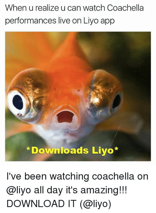 Coachella, Live, and Watch: When u realize u can watch Coachella  performances live on Liyo app  Downloads Liyo I've been watching coachella on @liyo all day it's amazing!!! DOWNLOAD IT (@liyo)