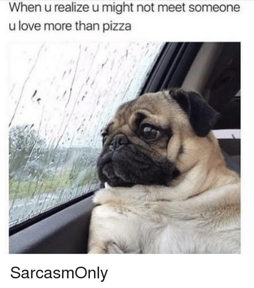 Funny, Love, and Memes: When u realize u might not meet someone  u love more than pizza SarcasmOnly