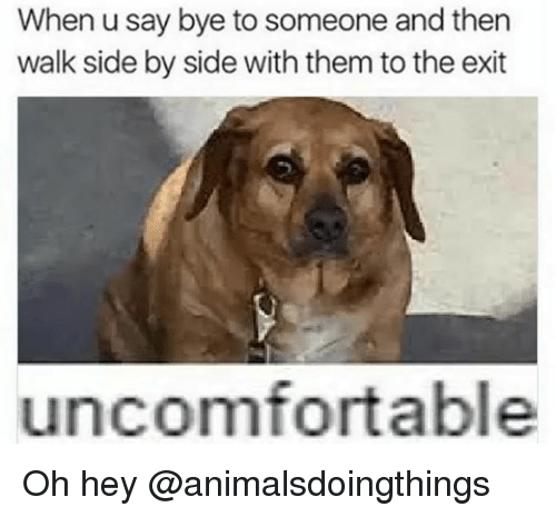 Dank Memes, Them, and Side by Side: When u say bye to someone and then  walk side by side with them to the exit  uncomfortable Oh hey @animalsdoingthings