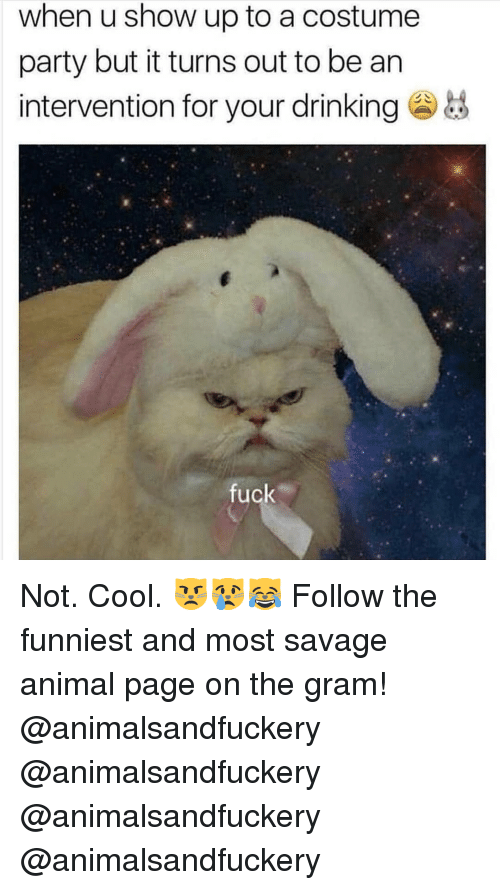 Drinking, Memes, and Party: when u show up to a costume  party but it turns out to be an  intervention for your drinking  fuck Not. Cool. 😾😿😹 Follow the funniest and most savage animal page on the gram! @animalsandfuckery @animalsandfuckery @animalsandfuckery @animalsandfuckery