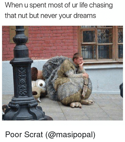 Life, Memes, and Dreams: When u spent most of ur life chasing  that nut but never your dreams Poor Scrat (@masipopal)