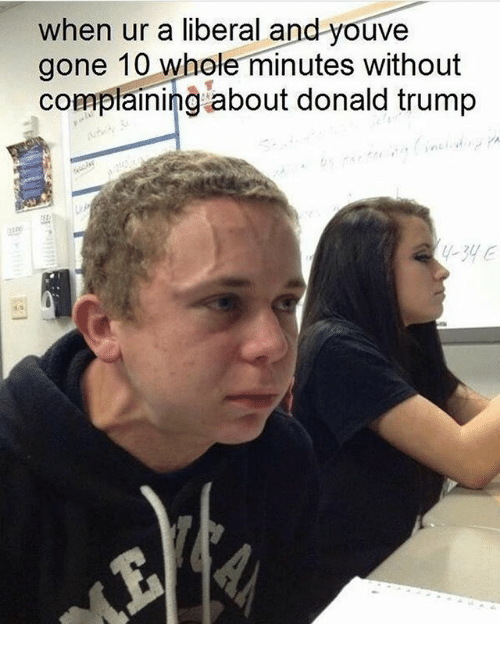 Donald Trump, Memes, and Trump: when ur a liberal and youve  gone 10 whole minutes without  complaining about donald trump  -34