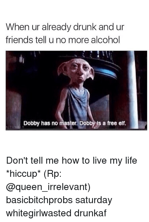 Drunk, Elf, and Friends: When ur already drunk and ur  friends tell u no more alcohol  Dobby has no master. Dobbyis a free elf. Don't tell me how to live my life *hiccup* (Rp: @queen_irrelevant) basicbitchprobs saturday whitegirlwasted drunkaf