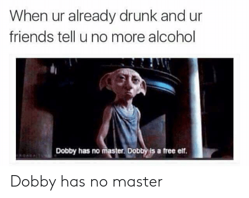 Drunk, Elf, and Friends: When ur already drunk and ur  friends tell u no more alcohol  Dobby has no master. Dobby is a free elf. Dobby has no master