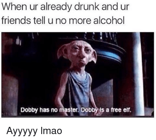 Drunk, Elf, and Friends: When ur already drunk and ur  friends tell uno more alcohol  Dobby has no master. Dobby is a free elf Ayyyyy lmao