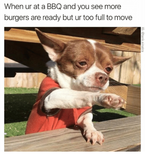 Dank, 🤖, and Move: When ur at a BBQ and you see more  burgers are ready but ur too full to move