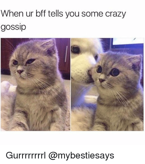 Crazy, Girl Memes, and You: When ur bff tells you some crazy  gossip Gurrrrrrrrl @mybestiesays