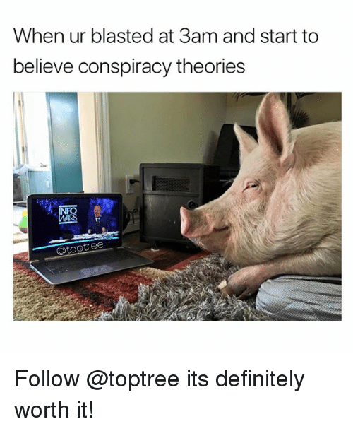Definitely, Memes, and Conspiracy: When ur blasted at 3am and start to  believe conspiracy theories  Otoptree Follow @toptree its definitely worth it!