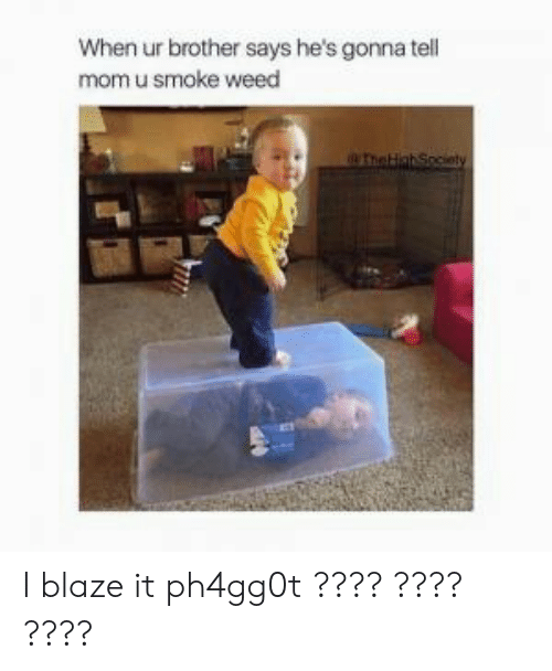 Weed, Blaze, and Mom: When ur brother says he's gonna tell  mom u smoke weed I blaze it ph4gg0t ???? ???? ????