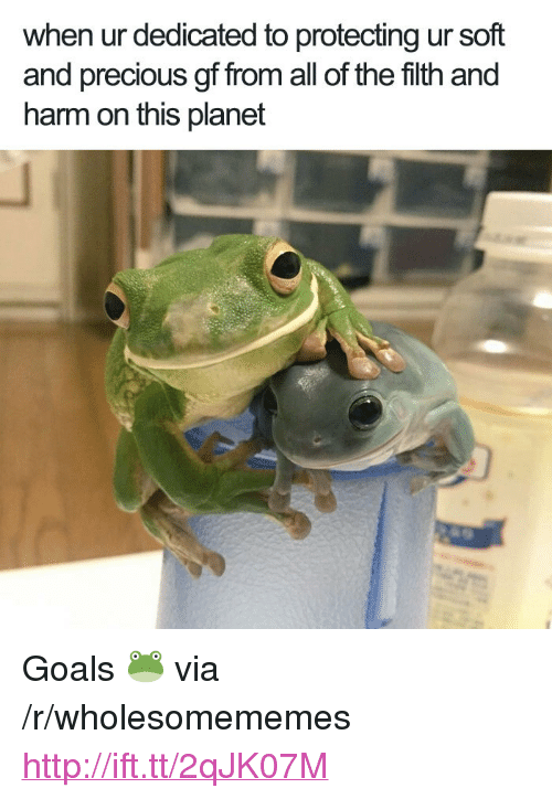 "Goals, Precious, and Http: when ur dedicated to protecting ur soft  and precious gf from all of the filth and  harm on this planet <p>Goals 🐸 via /r/wholesomememes <a href=""http://ift.tt/2qJK07M"">http://ift.tt/2qJK07M</a></p>"