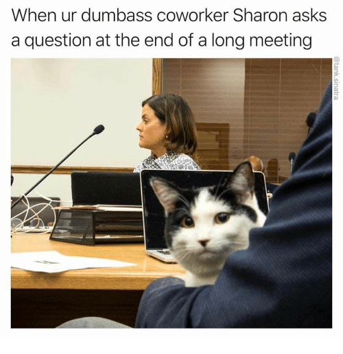 Asks, Question, and The End: When ur dumbass coworker Sharon asks  a question at the end of a long meeting