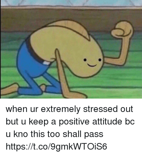 Girl Memes, Attitude, and Positive Attitude: when ur extremely stressed out but u keep a positive attitude bc u kno this too shall pass https://t.co/9gmkWTOiS6