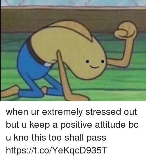 Girl Memes, Attitude, and Positive Attitude: when ur extremely stressed out but u keep a positive attitude bc u kno this too shall pass https://t.co/YeKqcD935T