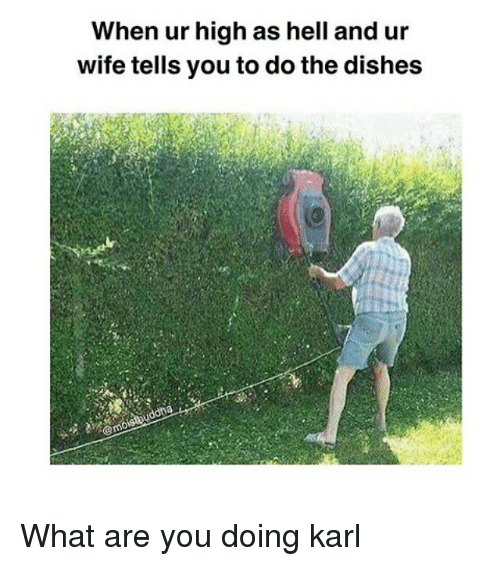 Memes, Wife, and Hell: When ur high as hell and ur  wife tells you to do the dishes What are you doing karl