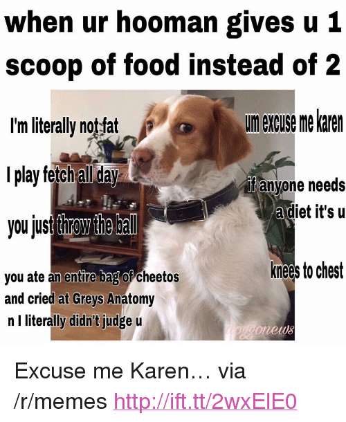 "Cheetos, Food, and Memes: when ur hooman gives u 1  scoop of food instead of 2  I'm literally notfat  l play fetch all day  you jusr throw the bal  urn excuse me karen  if anyone needs  adiet it's u  knees to chest  you ate an entire bag or cheetos  and cried at Greys Anatomy  n I literally didn't judge u  onews <p>Excuse me Karen… via /r/memes <a href=""http://ift.tt/2wxElE0"">http://ift.tt/2wxElE0</a></p>"