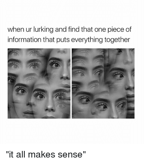 """Lurking, Information, and One Piece: when ur lurking and find that one piece of  information that puts everything together """"it all makes sense"""""""