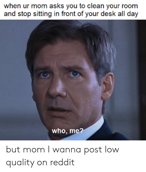 Reddit, Desk, and Mom: when ur mom asks you to clean your room  and stop sitting in front of your desk all day  who, me? but mom I wanna post low quality on reddit