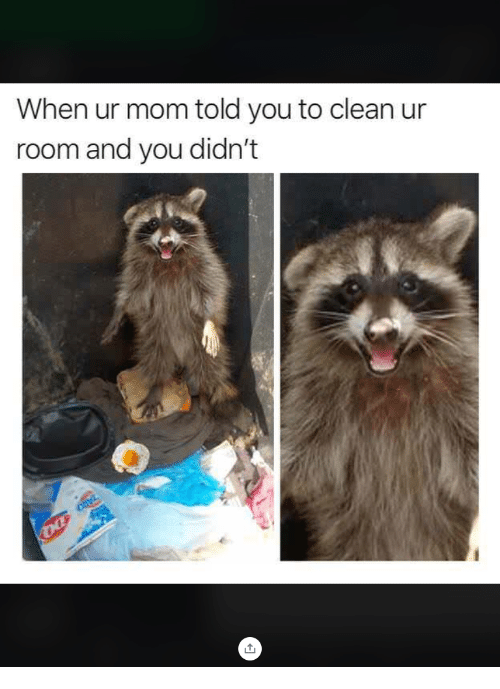 Mom, You, and Clean: When ur mom told you to clean ur  room and you didn't