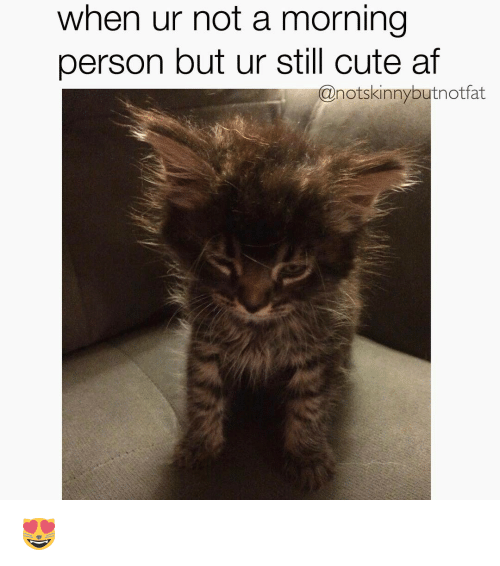 Cute, Memes, and Skinny: when ur not a morning  person but ur still cute at  @not skinny but not fat 😻
