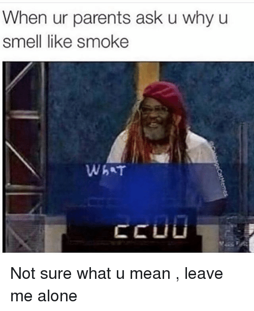 Dank Memes, What U, and Not Sure: When ur parents ask u why u  smell like smoke  WhAT  CC Li Li Not sure what u mean , leave me alone