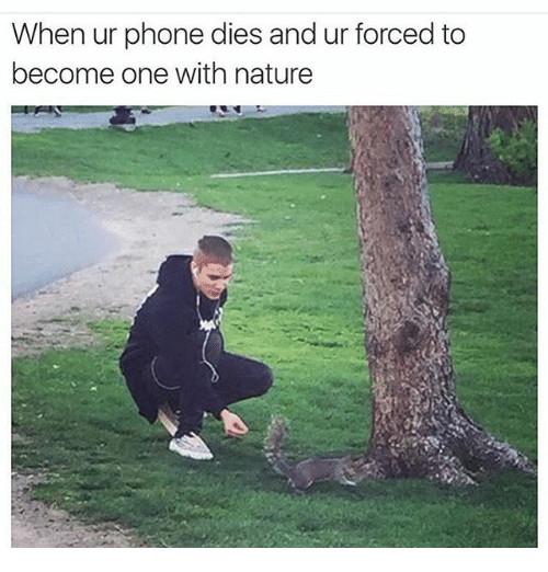 Funny, Meme, and Phone: When ur phone dies and ur forced to  become one with nature