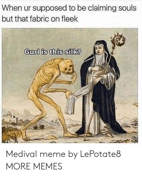 Dank, Meme, and Memes: When ur supposed to be claiming souls  but that fabric on fleek  Gurl is this silk? Medival meme by LePotate8 MORE MEMES