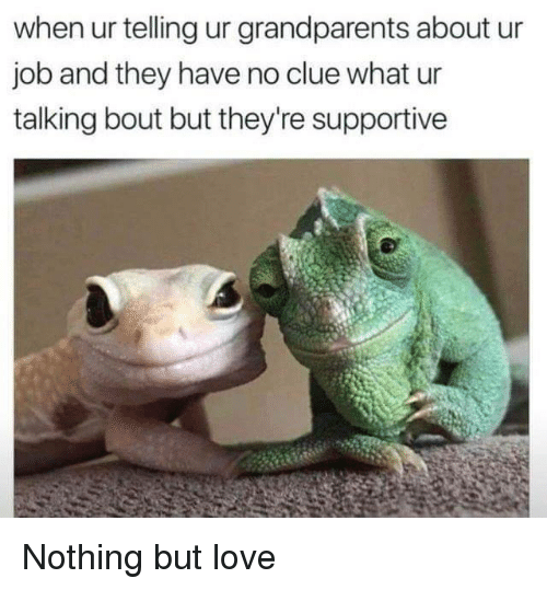 Love, Job, and Clue: when ur telling ur grandparents about ur  job and they have no clue what ur  talking bout but they're supportive Nothing but love