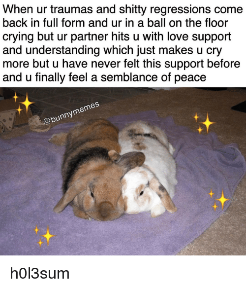 Memes, 🤖, and Regression: When ur traumas and shitty regressions come  back in full form and ur in a ball on the floor  crying but ur partner hits u with love support  and understanding Which just makes u Cry  more but u have never felt this support before  and u finally feel a semblance of peace  memes  Cobunny h0l3sum