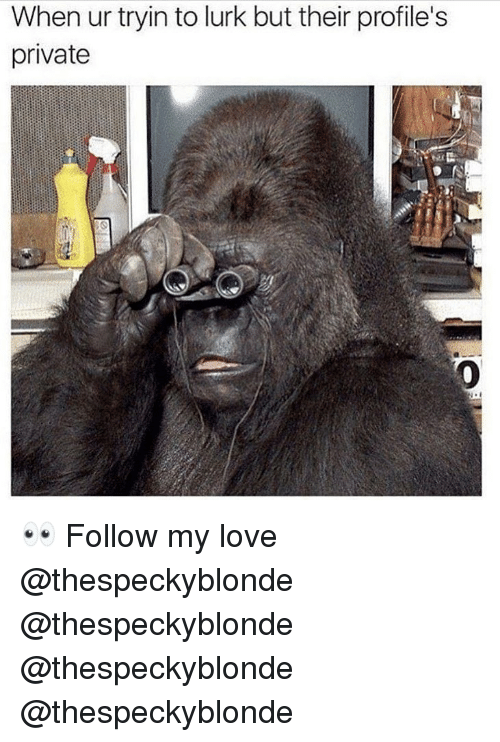 Love, Memes, and 🤖: When ur tryin to lurk but their profile's  private  Pi 👀 Follow my love @thespeckyblonde @thespeckyblonde @thespeckyblonde @thespeckyblonde