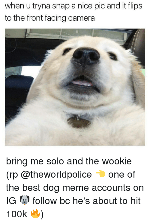 25 best memes about bring me solo bring me solo memes memes camera and when utryna snap a nice pic and it flips solutioingenieria Images