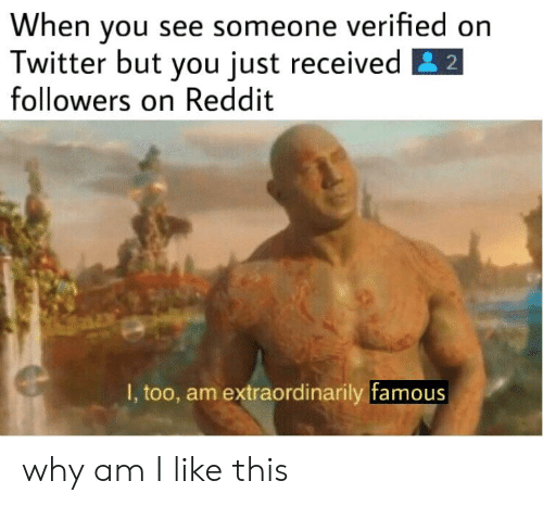 Reddit, Twitter, and Why: When vou see someone verified on  Twitter but you just received E2  followers on Reddit  I, too, am extraordinarily famous why am I like this