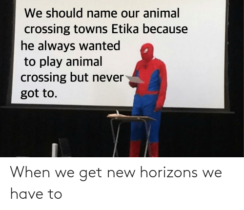 When We Get New Horizons We Have To Reddit Meme On Me Me