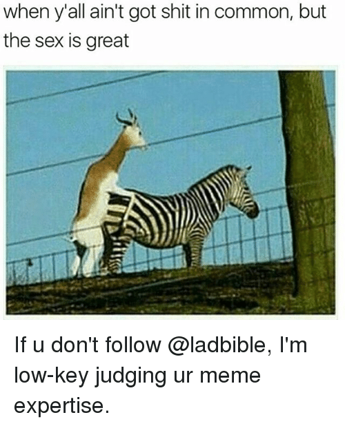 Low Key, Meme, and Sex: when y'all ain't got shit in common, but  the sex is great If u don't follow @ladbible, I'm low-key judging ur meme expertise.