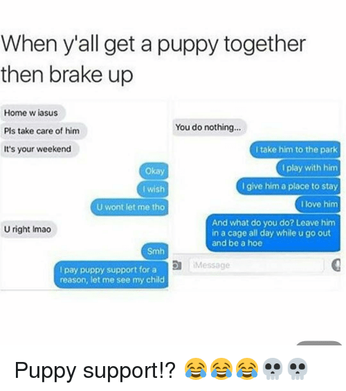 When Yall Get A Puppy Together Then Brake Up Home Wiasus You Do