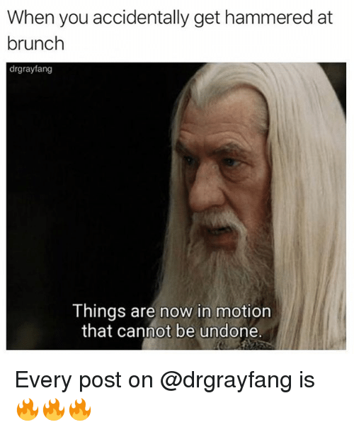 Memes, 🤖, and Brunch: When you accidentally get hammered at  brunch  drgrayfang  Things are now in motion  that cannot be undone. Every post on @drgrayfang is 🔥🔥🔥