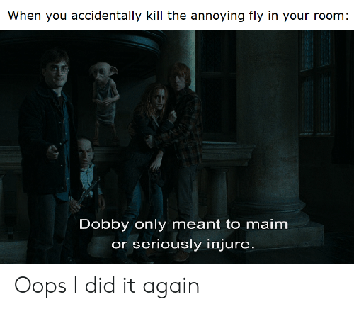 Reddit, Annoying, and Fly: When you accidentally kill the annoying fly in your room:  Dobby only meant to maim  or seriously injure. Oops I did it again