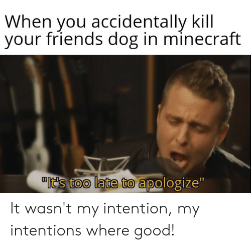 """Friends, Minecraft, and Good: When you accidentally kill  your friends dog in minecraft  It's too late to apologize"""" It wasn't my intention, my intentions where good!"""