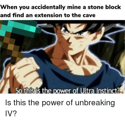 When You Accidentally Mine a Stone Block and Find an