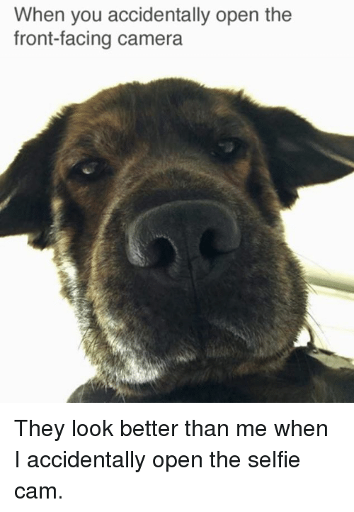 when you accidentally open the front facing camera they look better 5375252 ✅ 25 best memes about front facing camera front facing camera,Camera Meme