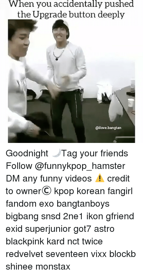 Friends, Funny, and Memes: When  you  accidentally  pushed  the Upgrade button deeply  @ilove.bangtan Goodnight 🌙》Tag your friends 》》 Follow @funnykpop_hamster 》》》DM any funny videos ⚠ credit to owner© kpop korean fangirl fandom exo bangtanboys bigbang snsd 2ne1 ikon gfriend exid superjunior got7 astro blackpink kard nct twice redvelvet seventeen vixx blockb shinee monstax