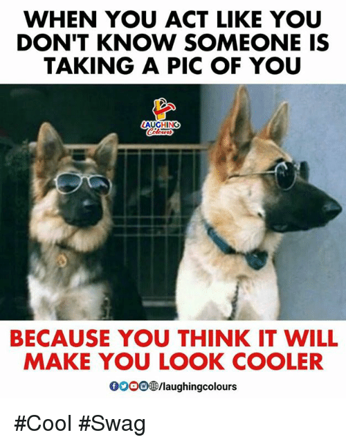 Swag, Cool, and Indianpeoplefacebook: WHEN YOU ACT LIKE YOU  DON'T KNOW SOMEONE IS  TAKING A PIC OF YOU  BECAUSE YOU THINK IT WILL  MAKE YOU LOOK COOLER  oooo㊧/laughingcolours #Cool #Swag