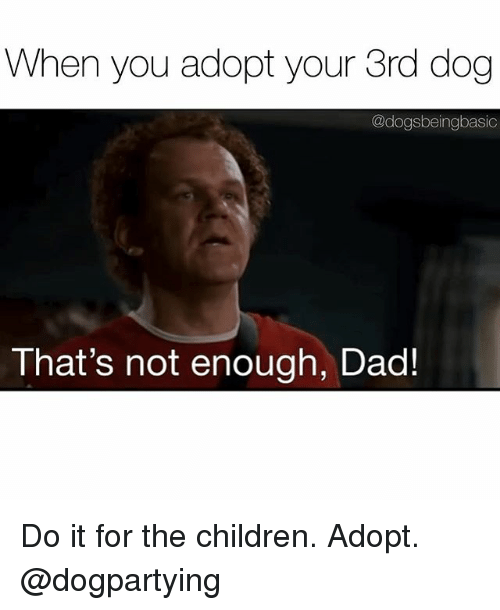 Children, Dad, and Memes: When you adopt your 3rd dog  @dogsbeingbasic  That's not enough, Dad! Do it for the children. Adopt. @dogpartying