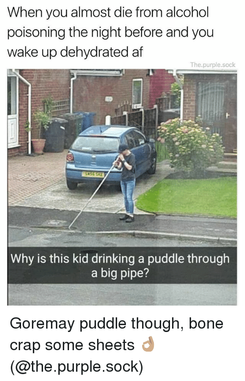 Af, Bones, and Drinking: When you almost die from alcohol  poisoning the night before and you  wake up dehydrated af  The.purple.sock  Why is this kid drinking a puddle through  a big pipe? Goremay puddle though, bone crap some sheets 👌🏽 (@the.purple.sock)