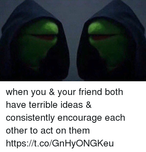 Girl Memes, Act, and Ideas: when you & your friend both have terrible ideas & consistently encourage each other to act on them https://t.co/GnHyONGKeu