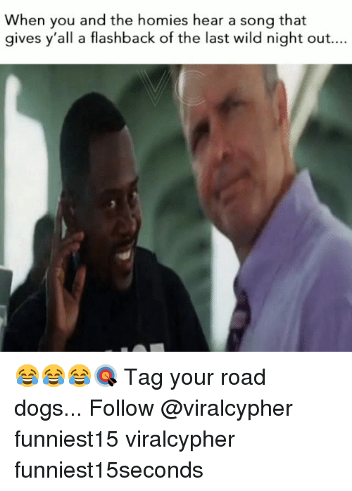 Dogs, Funny, and Wild: When you and the homies hear a song that  gives y'all a flashback of the last wild night out.... 😂😂😂🎯 Tag your road dogs... Follow @viralcypher funniest15 viralcypher funniest15seconds