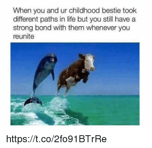 Life, Memes, and Strong: When you and ur childhood bestie took  different paths in life but you still have a  strong bond with them whenever you  reunite https://t.co/2fo91BTrRe