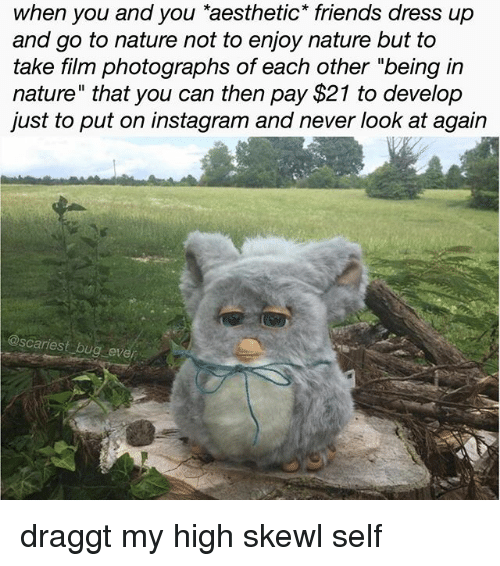 """Friends, Instagram, and Memes: when you and you aesthetic* friends dress up  and go to nature not to enjoy nature but to  take film photographs of each other """"being in  nature"""" that you can then pay $21 to develop  just to put on instagram and never look at again  @scariest bug even draggt my high skewl self"""