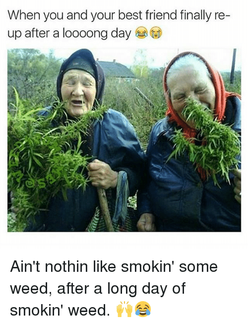 Best Friend, Memes, and Weed: When you and your best friend finally re  up after a loooong day Ain't nothin like smokin' some weed, after a long day of smokin' weed. 🙌😂